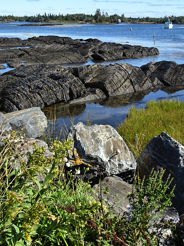 Blue Rocks view
