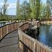 Armidale Arboretum by Davidgee2008
