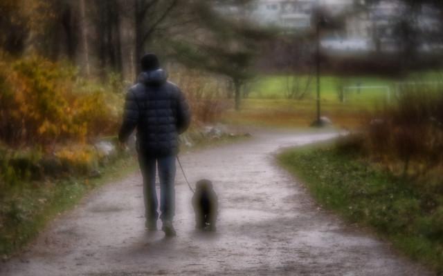 Autum Walk