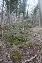 2015-03-01-15-23-14_Les Forts Trotters_à Marlenheim