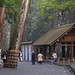 Ise Grand Shrine by 雷太