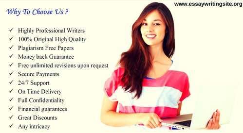 Professional Essay Writing Guide