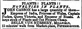 Plants ad 1876