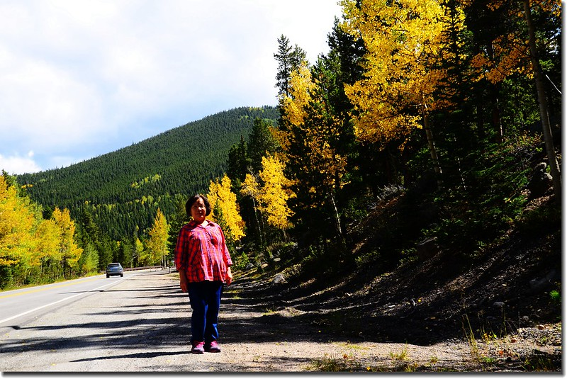 Fall colors, Mount Evans Scenic Byway, Colorado (14)