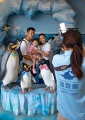 Family posing for a photo souvenir in the middle of fake penguins in Kaiyukan aquarium, Kansai region, Osaka, Japan