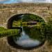 Through the Bridge 2