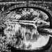 Canal Bridge Reflection bw