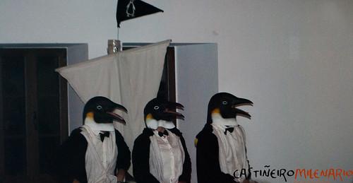 Lucecís , PinguíSOS
