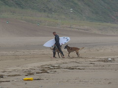 A surfer and his dogs