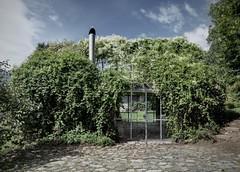 """Студия Act Romegialli Architects спроектировала """"зеленый ящик"""", отремонтировав небольшой заброшенный гараж одной из резиденций в Альпах."""