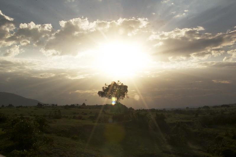 Maasai Mara 2 9