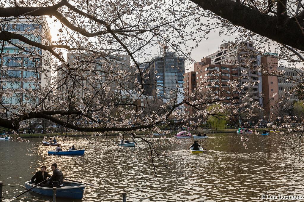 Ueno-Park-76