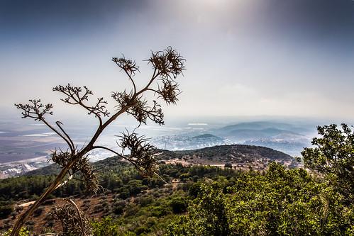 2017 petra israel holylandtour jordan ezorhaifa haifadistrict il
