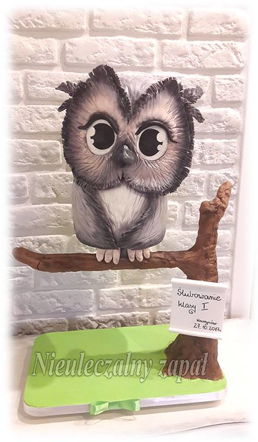 Owl Cake by Nieuleczalny Zapal-Torty