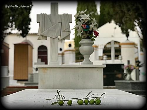Decanso total,cementerio de paradas