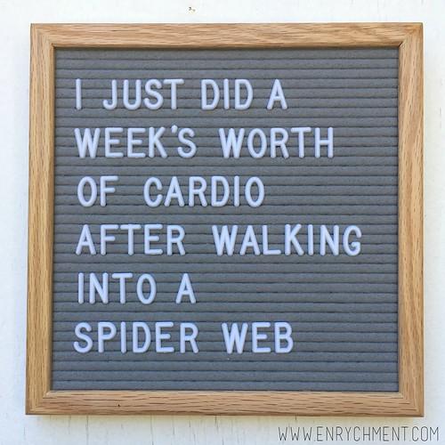 Spiderweb letterboard