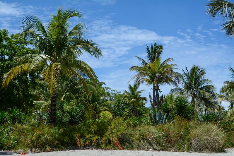 Castaway Cay