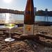 Generation Pfalz WtasO Wein trinken an schönen Orten mit Lucashof am Rheinstrand Mannheim duesiblog 6