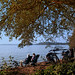They enjoy the last warm October sunshine at the Lake Plön by Ostseeleuchte