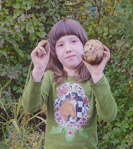 Lotti with the smallest and the biggest potato from the harvest autumn 2017 / Im Garten: Lottchen mit dem größten und dem kleinsten Erdäpfel / Kartoffel der Ernte Herbst 2017