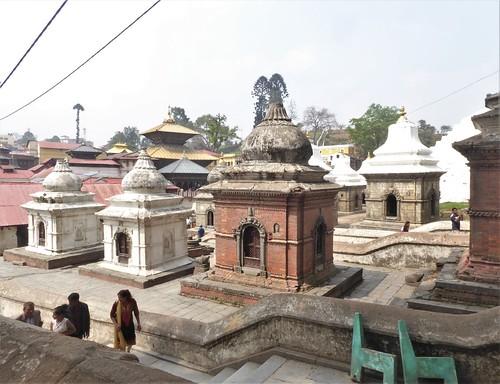 n-Pashupatinath (15)