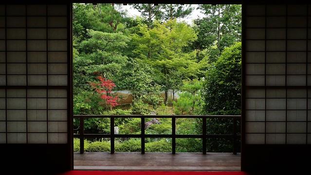 A view through paper windows 京都 妙心寺 大雄院