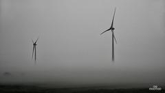 In ze mist - Photo of Pertain