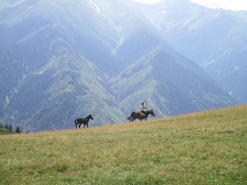 馬と少年など。