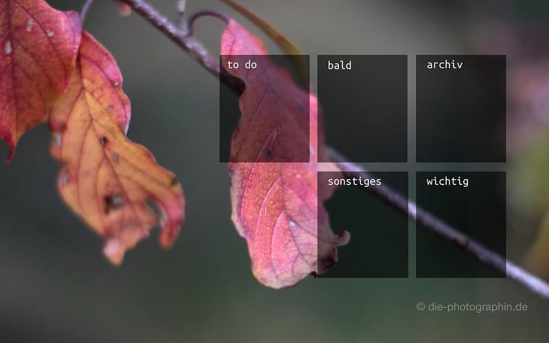 11-17_herbstlaub-organizedDesktop-wallpaperliebe-fotoprojekt17-herbstspaziergang-diephotographin