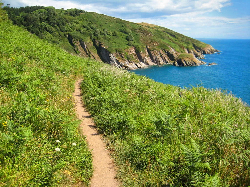 The South West Coast Path above Pudcombe Cove. Credit Philip Halling