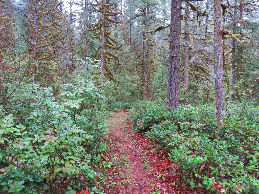 Trail in Oxbow Park