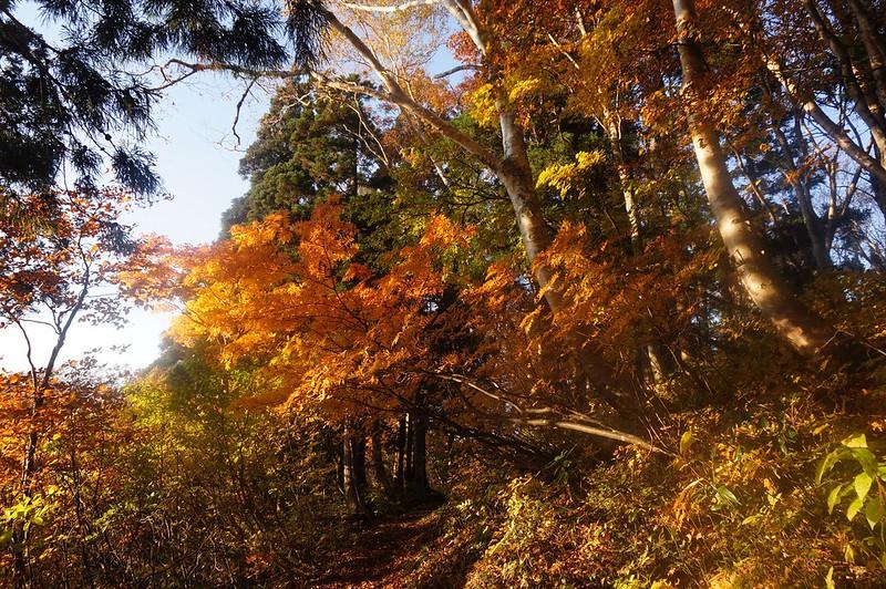 """Mountain-climbing path """"KAGAZENJOUDOU"""""""