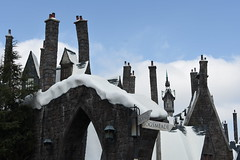 """No part of your body has permission to be in Hogsmeade"" -Professor Snape October 5, 2017"