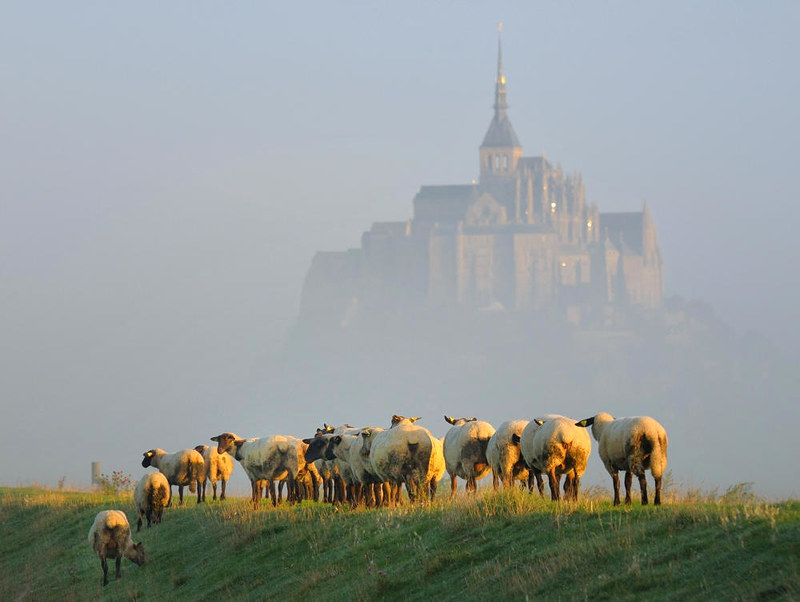 Mont Saint-Michel in September morning. Credit Vlasenko
