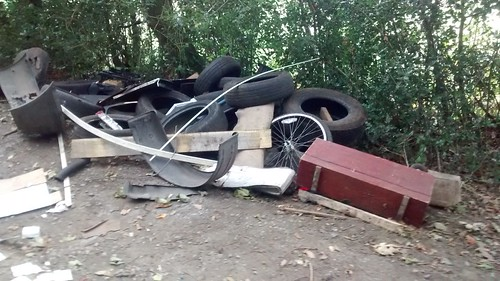 Fly tipping Sandy Lonnen Oct 17 (1)