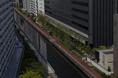 Tokyo 4232