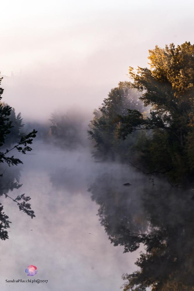 nebbia -1498