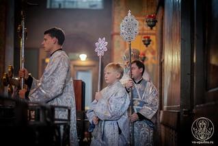 Литургия в Софийском соборе 210