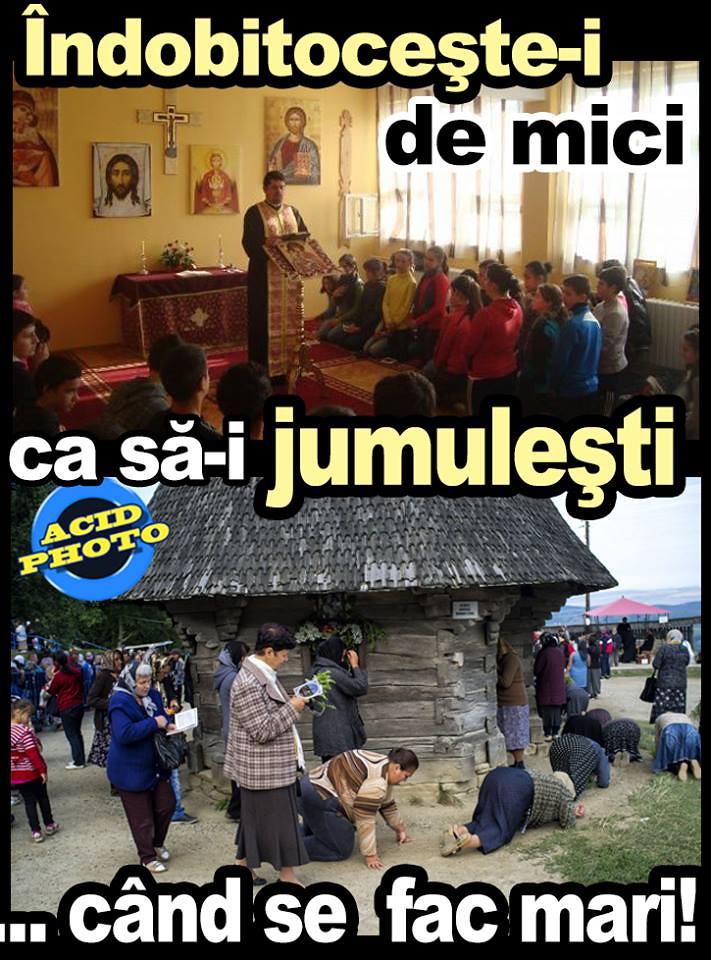 Ce faci cand nu ai un job legal, adica nu platesti nimic pentru trai in Romania, fiind un parazit? Te duci la pupat moaste!