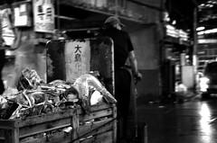 築地市場 / Tsukiji Market