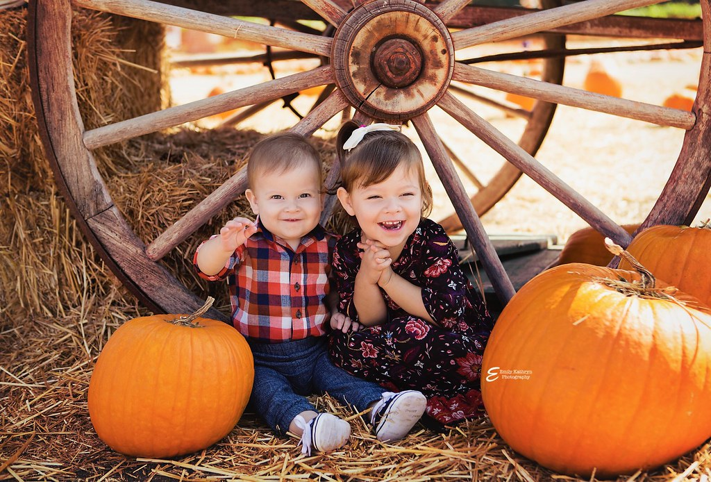 pumpkin patch mini shoot