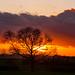 Tur Langton, Leicestershire