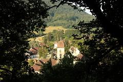2015-07-05-07-55-02_Les Forts Trotters_dans le Haut Doubs
