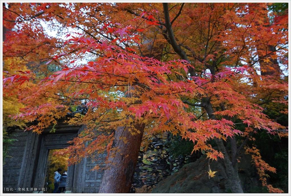 紅葉迴廊-久保田一竹美術館-7