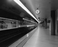 Ghost Train on Platform 6