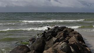 Auf Rügen hinter Gestein und geschützt vor Wind und Einfluß der Feuchtigkeit 02335