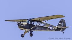 1947 Taylorcraft BCR-D N43203