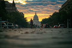 Capitol Morning 5