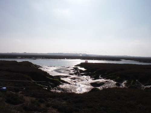 Bridgemarsh Creek and Island