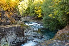 Elwah River C0951